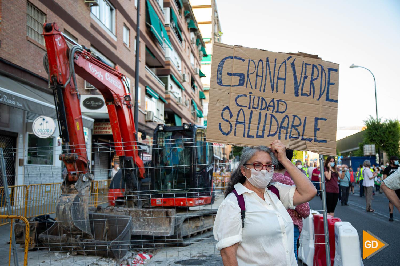 FOTOS TALA DE ARBOLES (3)