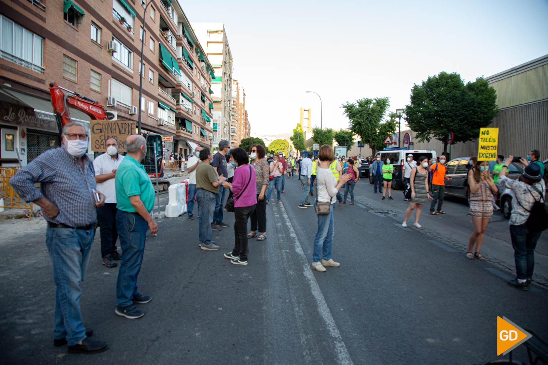 FOTOS TALA DE ARBOLES (4)