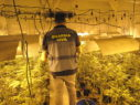 centro produccion marihuana