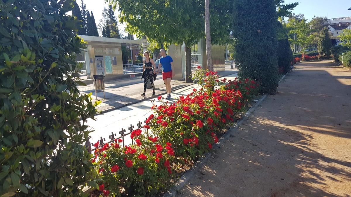 Salidas de los mayores a la calle en Granada 16