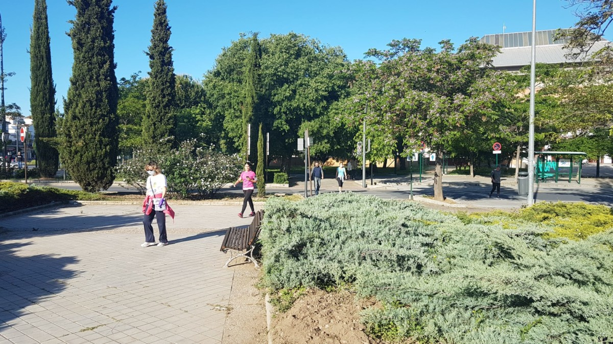 Salidas de los mayores a la calle en Granada 15
