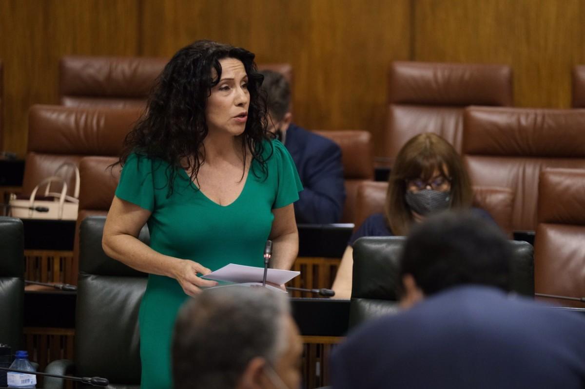 Foto 3 Parlamento 020620