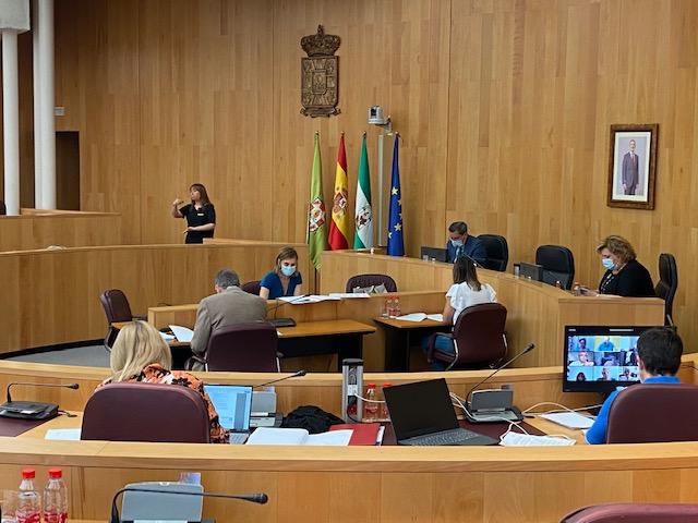 pleno Diputación Granada 29julio20