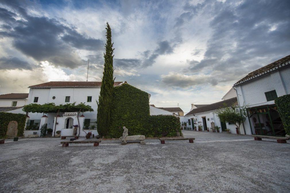 Patio Casa Museo (1)