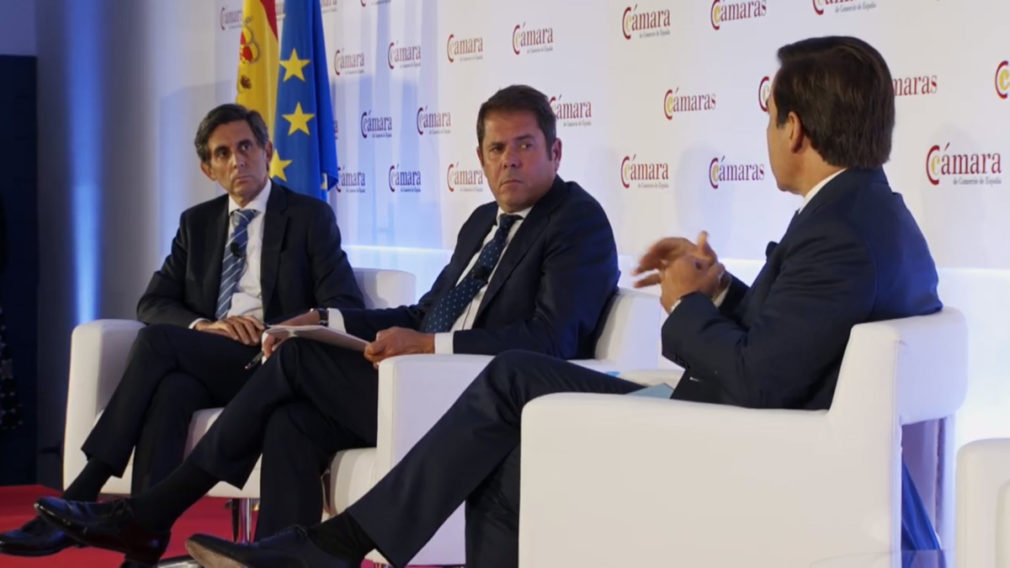 Pleno Cámara de España (4)