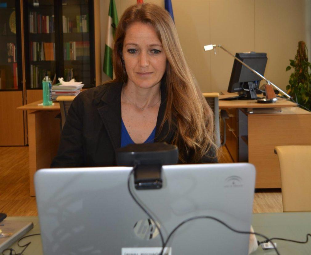 Granada.- Coronavirus.- Junta informa a los colegios profesionales de Granada sobre la tramitación de ERTE por rebrotes