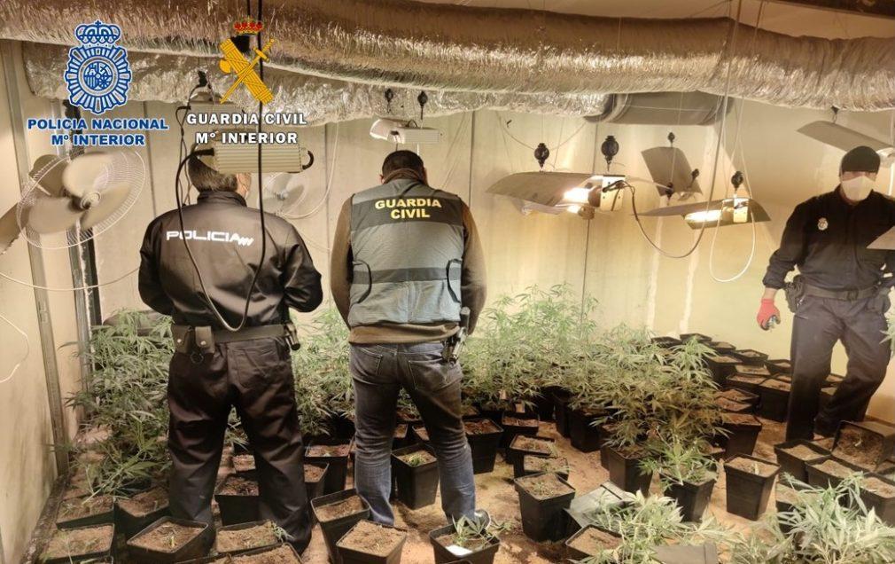 Fotografía agentes incautando plantaciones marihuana en Bobadilla operación conjunta Guardia Civil y Policía Nacional