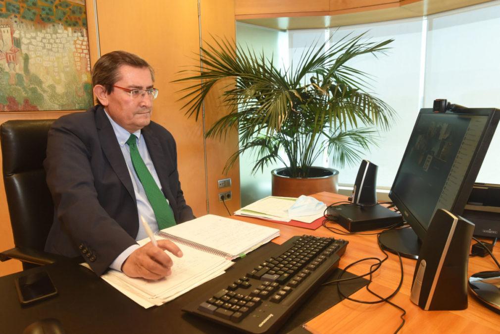 El presidente de la Diputación, José Entrena, en una reunión telemática con el sector turístico