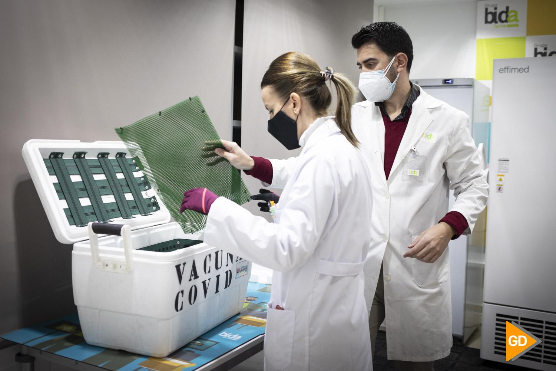 Vacunas contra el Covid 19 en las instalaciones de Bidafarma en Granada