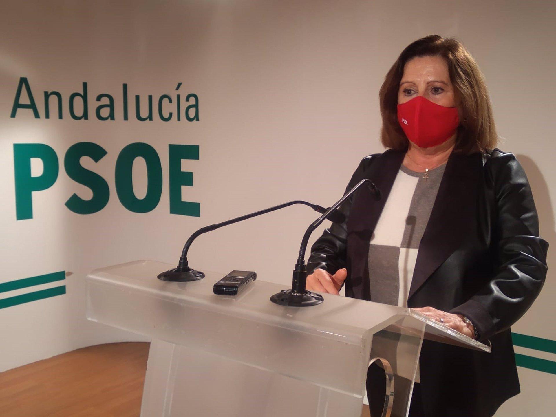 María José Sánchez Rubio PSOE