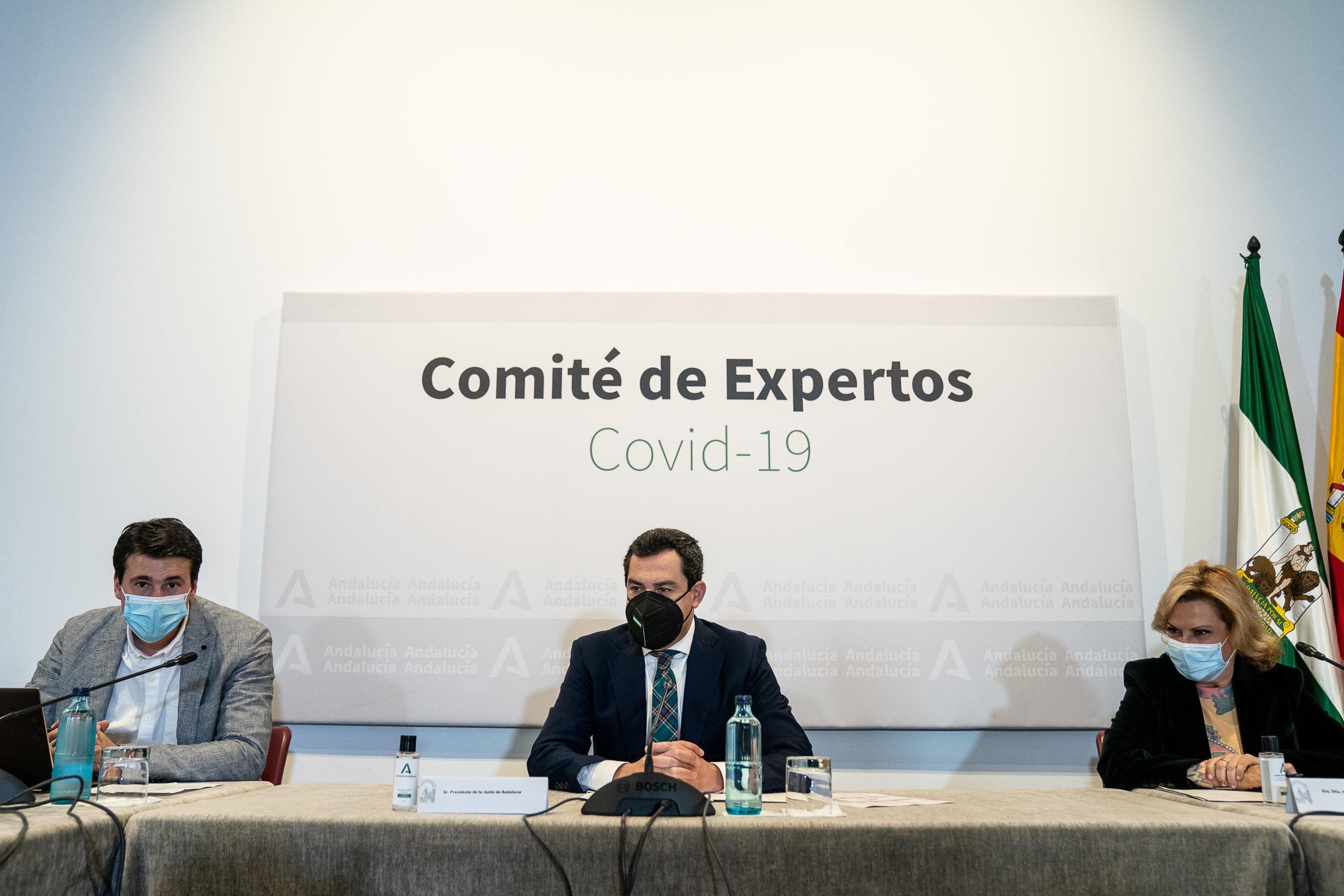 Comité Expertos Junta